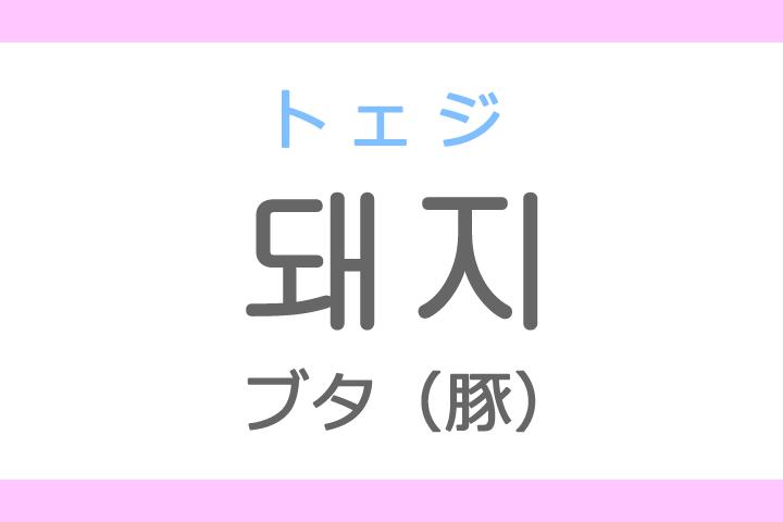 돼지(トェジ)の意味「ブタ(豚)」ハングル読み方・発音