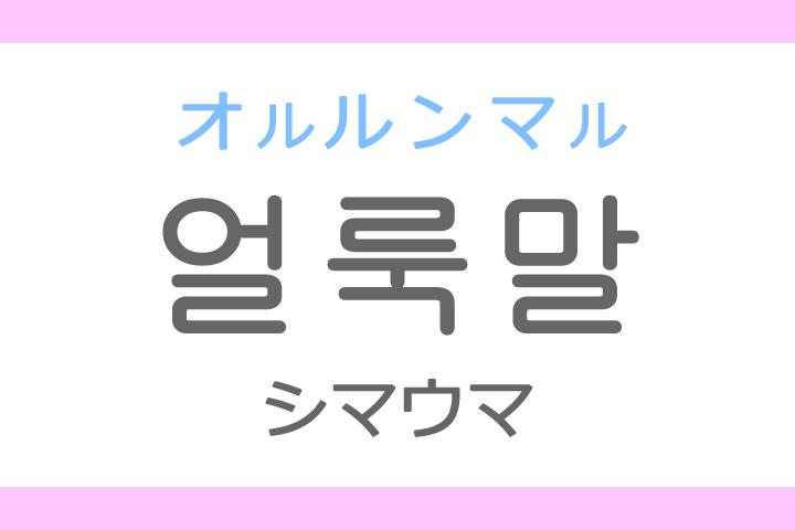 얼룩말(オルルンマル)の意味「シマウマ、しまうま」ハングル読み方・発音