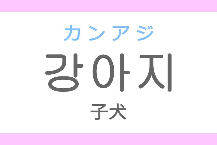 강아지(カンアジ)の意味「子犬(こいぬ)」ハングル読み方・発音
