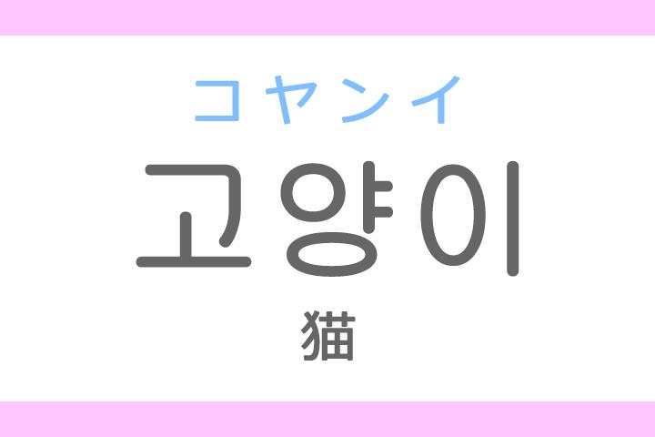 고양이(コヤンイ)の意味「猫(ねこ)」ハングル読み方・発音