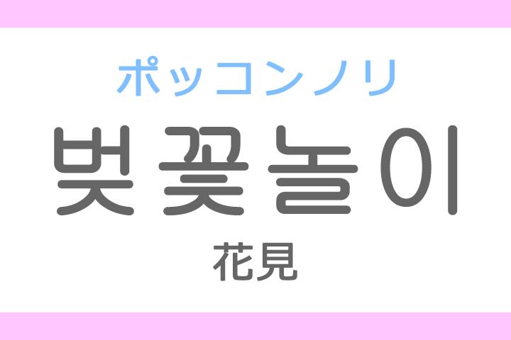 벚꽃놀이(ポッコンノリ)の意味「花見(はなみ)」ハングル読み方・発音